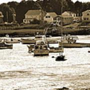 Green Harbor At Low Tide Art Print