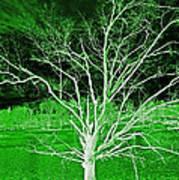Green Magic Tree Art Print