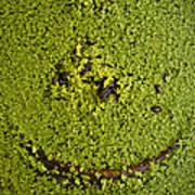 Green Smile Art Print