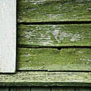 Green Wooden Wall Art Print