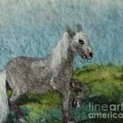Grey Horse Art Print by Nicole Besack