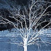 Grey Magical Tree Art Print