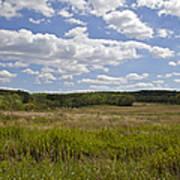 Griggstown Native Grassland Preserve Art Print