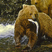 Grizzly Bear And Cubs Art Print
