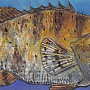 Grouper Print by Edward Walsh