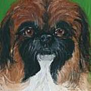 Gucci The Peke Art Print