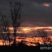 Guilded Sunset Art Print