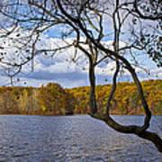 Hall Lake In Autumn No 0118 Art Print