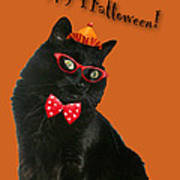 Halloween Card - Black Cat Ready To Party Art Print
