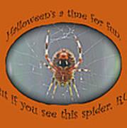 Halloween Greeting Card - Marbled Orb Weaver Spider Art Print