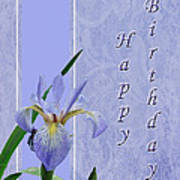 Happy Birthday Greeting Card - Blue Flag Iris Wildflower Art Print