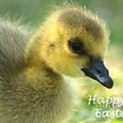 Happy Easter Gosling Art Print