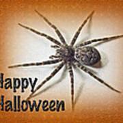 Happy Halloween Spider Greeting Card - Dolomedes Tenebrosus Art Print