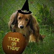 Happy Halloween Art Print by Victoria Sheldon
