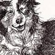Happy The Boarder Collie Art Print
