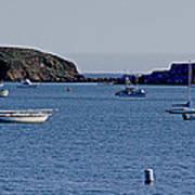 Harbor On The California Coast Art Print