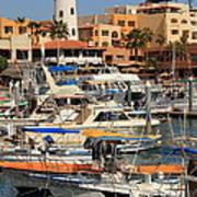 Harbor Waterfront In Cabo San Lucas Art Print
