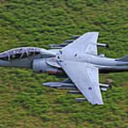 Harrier Low Level Art Print
