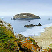 Harris Beach Art Print