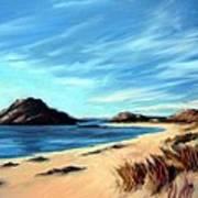 Havik Beach Art Print