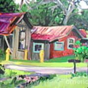Hawaiian Tin Roofs Art Print