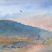 Hawk At Sunset Over Stenbury Down Print by Alan Daysh