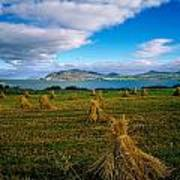 Hay Bales In A Field, Ireland Art Print