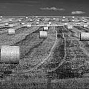 Hay Bales On A Farm In Alberta Art Print