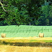 Hay Landscape Art Print by France Laliberte