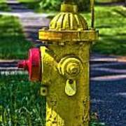 Hdr Fire Hydrant Art Print