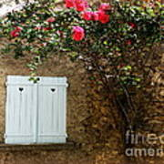 Heart Shutters And Red Roses Art Print
