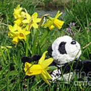 Hello Spring. Ginny From Travelling Pandas Series. Art Print