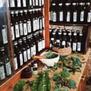 Herbal Pharmacy Art Print