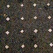 Herculaneum Floor Art Print