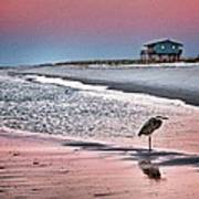Heron And Beach House Art Print