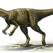 Herrerasaurus Ischigualastensis Art Print