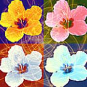 Hibiscus Blooming Art Print