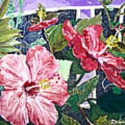 Hibiscus Seductris Art Print