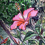 Hibiscus Sketchbook Project Down My Street  Art Print by Irina Sztukowski