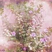 Hibiscus The Flower Of Pride Art Print