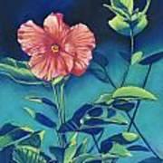 Hibisicus Art Print by Billie Colson