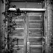 Hidden Door B And W Art Print