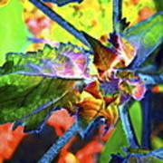 Hidden In Color Art Print
