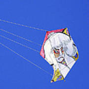 High Flying Character  Art Print