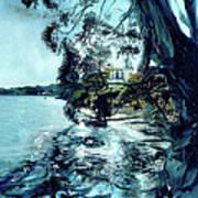 High Tide At The Tiburon Audubon Art Print