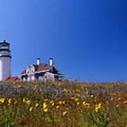 Highland Lighthouse Cape Cod Art Print by Skip Willits
