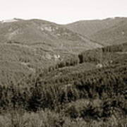 Hills In Black And White Art Print