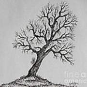 Hilltop Crooked Tree Art Print