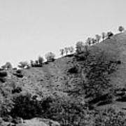 Hilltop In A Row - Black And White Art Print