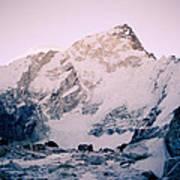 Himalayas In Nepal Art Print